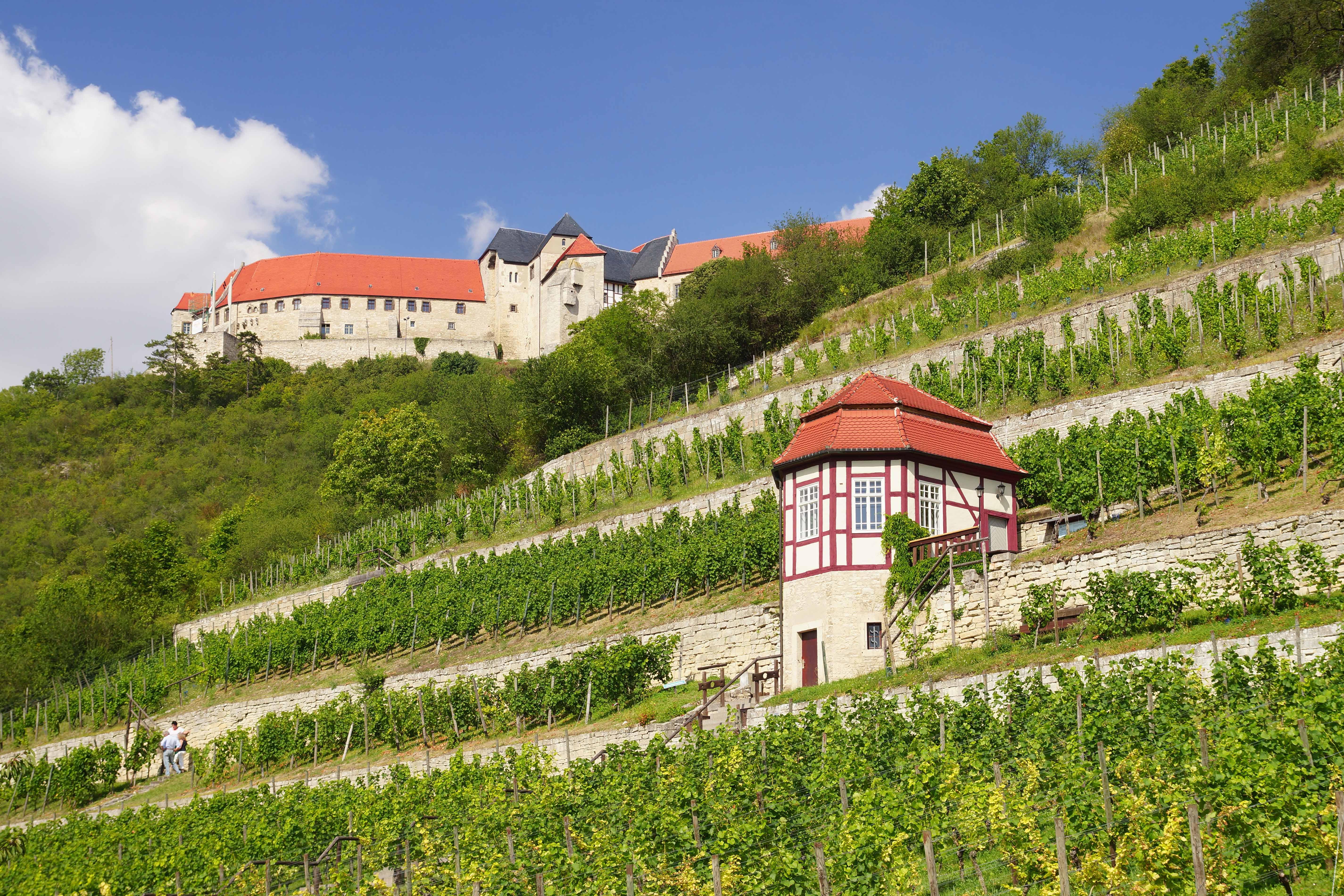 Ihr Immobilienmakler für Freyburg | Haus verkaufen | Immobilie verkaufen in Freyburg