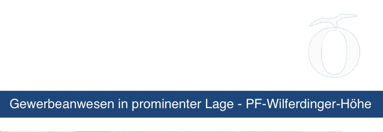Gewerbe Anlage Immobilie Pforzheim