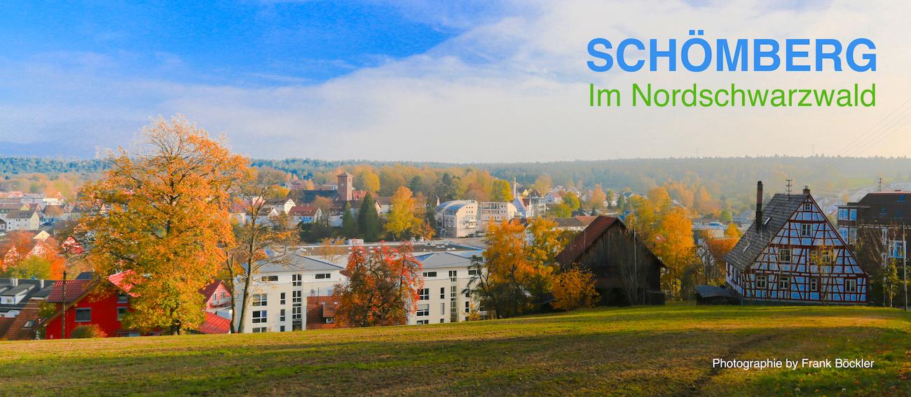 Schömberg im Nordschwarzwald Immobilien