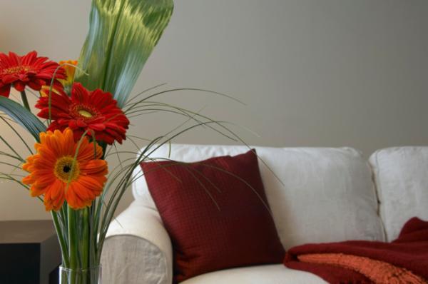 Mit Kissen und Decke dekorierte Couch