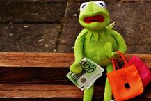 Tippgeber Frosch