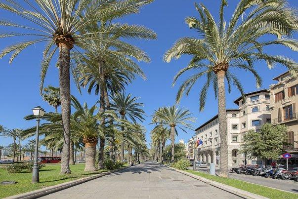 Exklusive Immobilien in Palma de Mallorca
