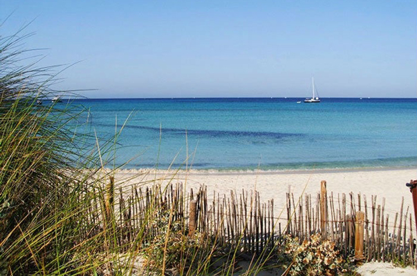 Immobilienmakler in Campos Mallorca