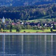 Immobilienmakler Zürcher Oberland