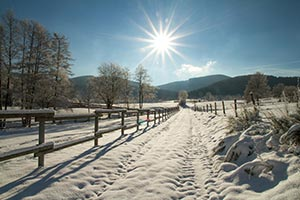 Sauerland Schnee Wanderweg