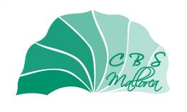 Logo CBSMallorca