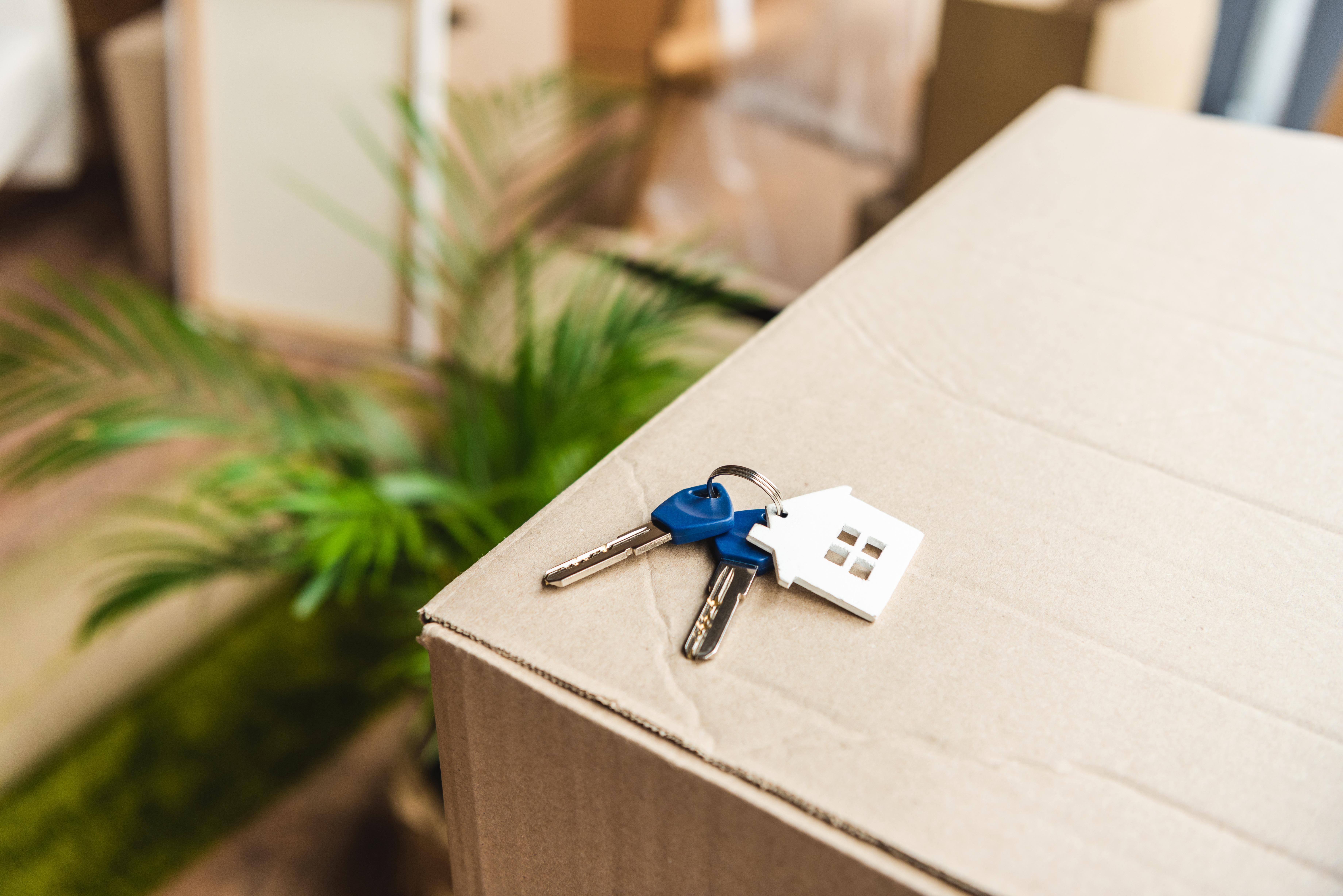 Schlüssel liegt auf Umzugskarton
