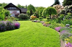 Großer Garten mit Holzhaus