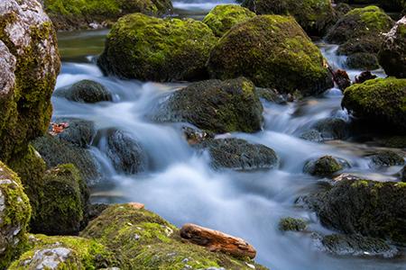 Waldbach mit moosbedeckten Felsen