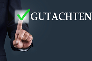 Gutachten Checkbox